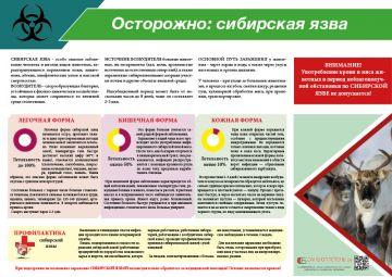 Санбюллетень Осторожно:Сибирская язва